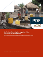 Mozambique Synthesis Report