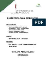 BIOTECNOLOGIA AMBIENTAL monografia
