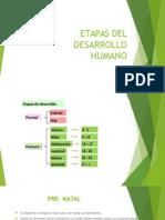 ETAPAS DEL DESARROLLO HUMANO 2.pptx