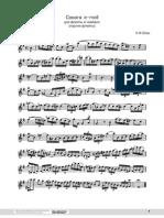 Bach, CPE - Flute Sonata in E Minor (Flute Part)