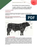 unidad-tematica-i-unidad-3-tema-1-exteriores-comparada.pdf