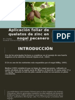 Aplicación Foliar de Quelatos de Zinc en Nogal