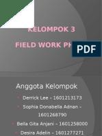 Field Work Phase