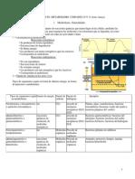 Resumen Temas 10 y 11 Metabolismo