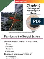 6 Skeletal Intro