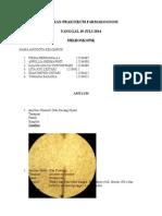 Laporan Praktikum Farmakognosi Smt IV