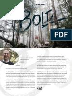 BOLD Campaign Brochure