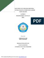 contoh laporan pkl di dinas lingkungan hidup kota kediri