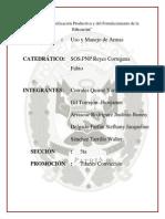 3.Grupo Arrascue - Clasificación de Armas-easy(YA)
