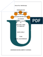 Informe Final Morfofisiología