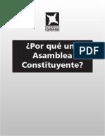 Por Que Una Asamblea Constituyente