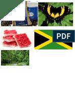 A Few Jamaican Things