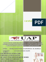PERFIL DE FISIOTERAPIA ross.ppt