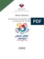 guia clinica CC