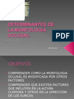12. Determinantes morfologia oclusal.ppt