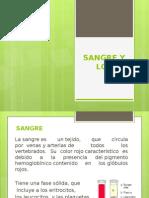 SANGRE (1)
