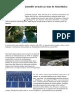 Instalador Solar Gainesville completa curso de fotovoltaica de FSEC