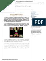 Manual de Reproduccion Bovina_ Endocrinologia
