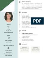 michel burillo_CV.pdf