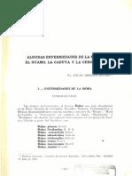 29665-106604-1-PB.pdf
