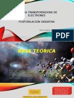 Cadena Transportadora de Electrones y Alzheimer (1)