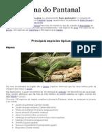 Fauna Do Pantanal