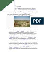 Paleolítico Del África Subsahariana
