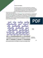 Composición en La Bacterias Gram Positivas