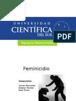 Feminicidio SUB