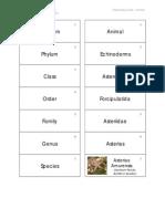 Chinese_Box_Cards_Animal.pdf