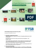 Eucalyptus Oil Distillation.pdf