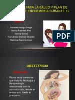 Promoción para la salud y plan de cuidados.pptx