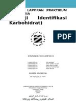 Laporan 1 Uji Identifikasi Karbohidrat Biokimia