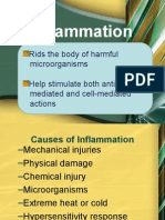 Inflammatry Process