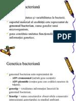 curs Ro  3 genetica bacteriana