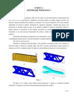 Optimizare topologica