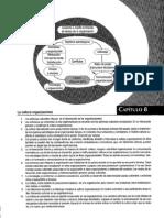 Krieger-cap8  la cultura organizacional.pdf