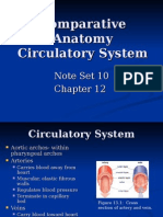 CA Section 12- Circulatory System (Chapter 12)