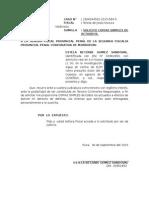 ESCRITO SOLICITANDO COPIAS SIMPLES.docx