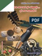 275316954-CCD-Despre-arcuri-si-sageti-si-nu-numai.pdf