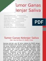 tumor ganas kelenjar saliva