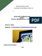 Planificarea Si Organizarea Productiei