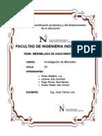 Trabajo Final Inv. de Mercado 24.06_último