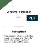 consumer perception.pptx