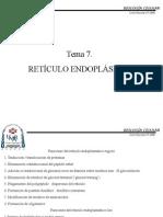 reticulo-endoplasmico1