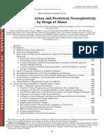 Mechanism of Brain Changes in Addiction
