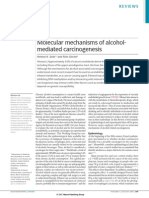 Mecnismos Moleculares de Alcohol Que Median La Carcinogenesis