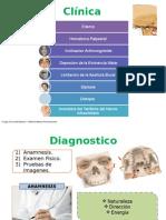 Seminario de Cirugia Plastica