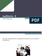 Normas y Técnicas de Auditoría