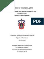 Reporte de Necropsia 4 CURSO PATOLOGIA SISTEMICA UNIVERSIDAD DE GUADALAJARA LICENCIATURA DE VETERINARIA Y ZOOTECNIA